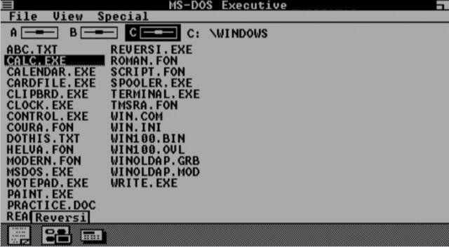 windows 1.01 browser o Futuro é Mac