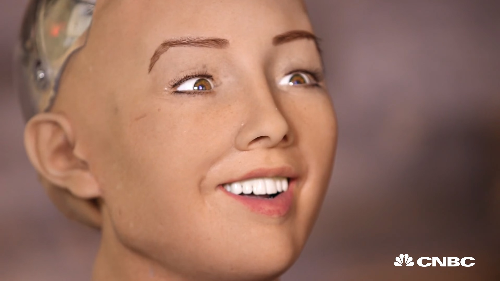 Shophia Robot Pedro Topete Inteligência Artifical AI